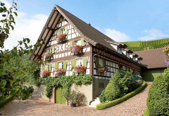 Urlaub auf dem Winzerhof - Ferienwohnung 1