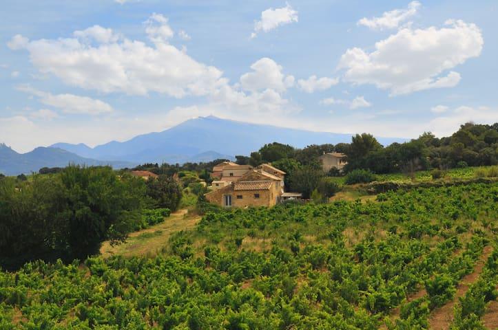 Les Vignes de chateauneuf du Pape 2 - Orange - Huoneisto
