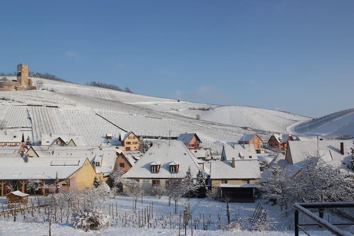 Dans le vignoble à 6km centre de Colmar