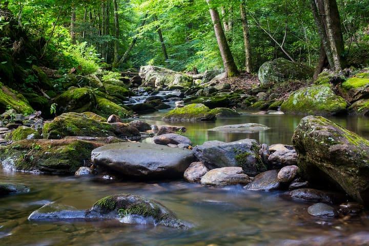 Rustic Paradise; Stream, Blue Ridge Pkwy, Camp,