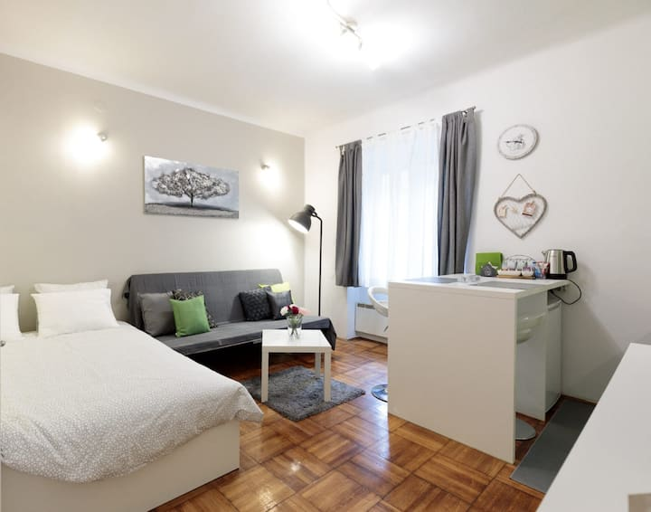 Charming apartment in the heart of town
