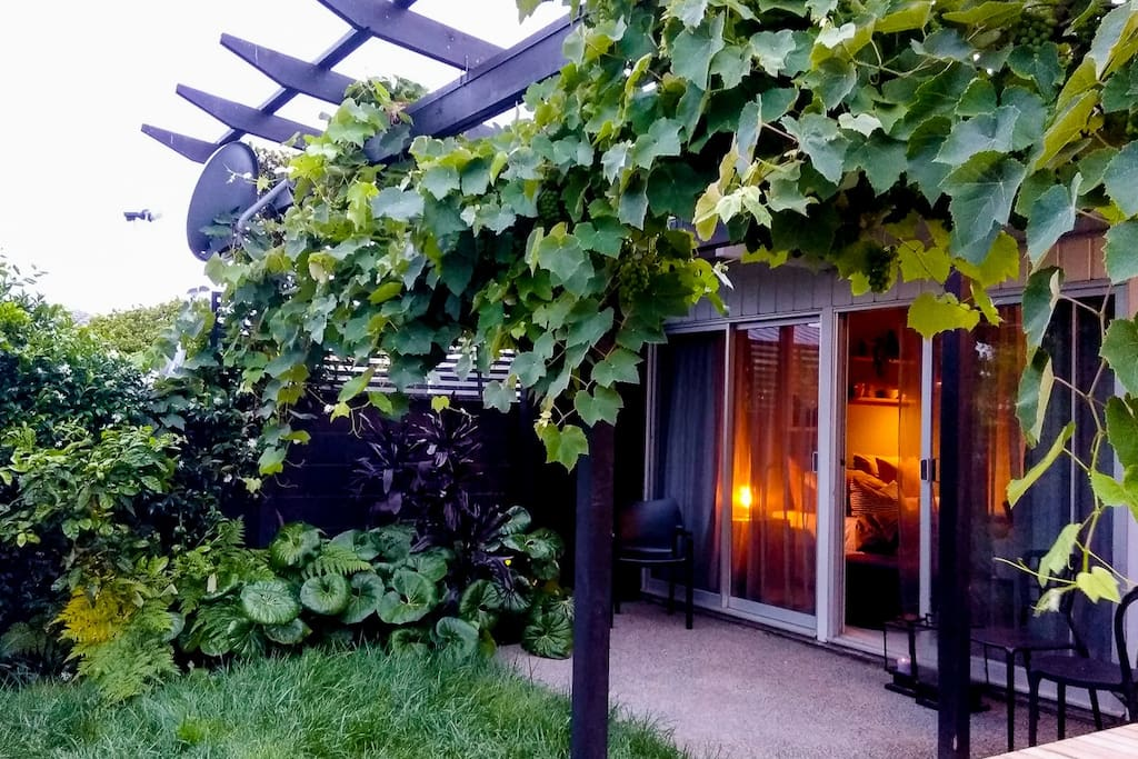 Your Master bedroom in evening light... with outdoor courtyard and overhanging grapevine