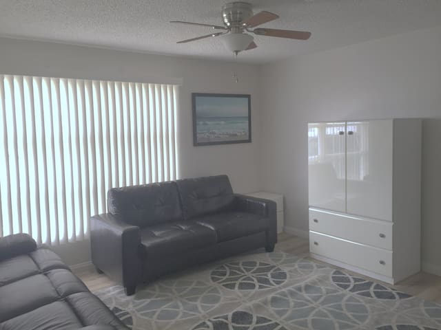 Living Room/Fold Out Queen Sofa Sleeper