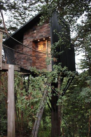 Tree Lodge Chiloé,  la casa en el árbol soñada