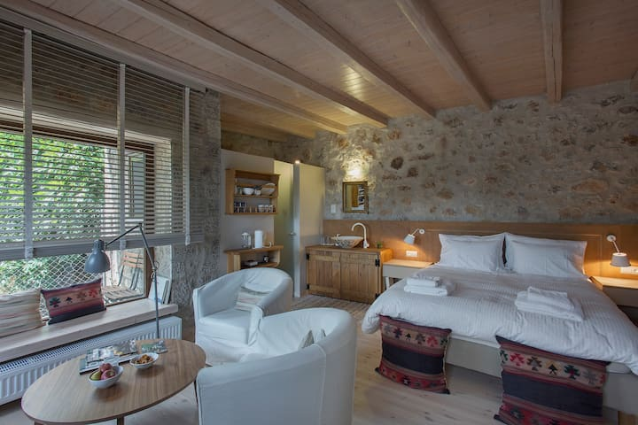 Milia Room - Arachova - House