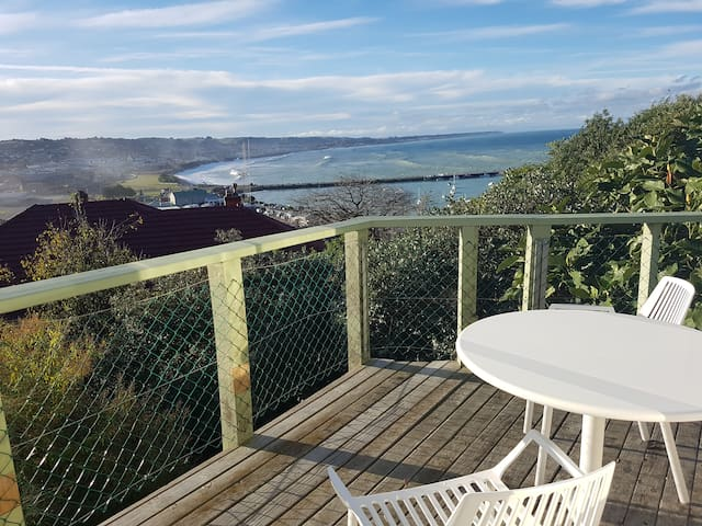 Ocean View Escape on Avon - Oamaru - Rumah