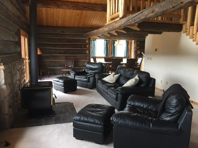 Living room with rustic logs
