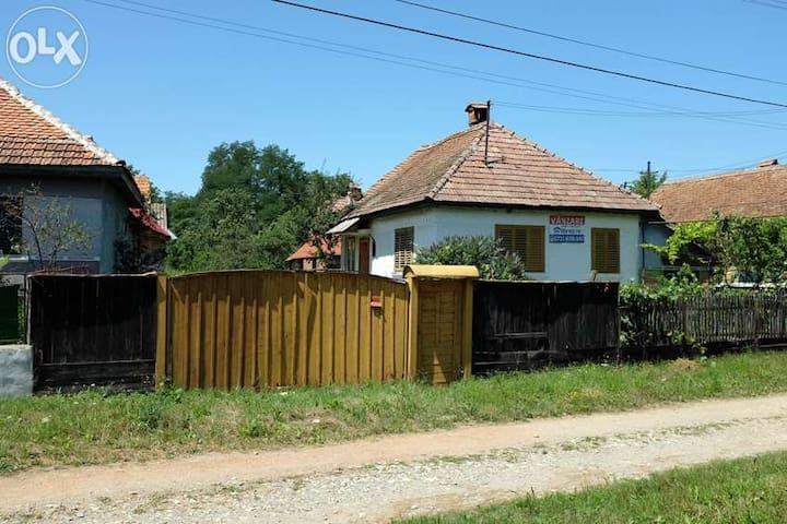 Holiday home Transylvanian village - Sărata - Hus
