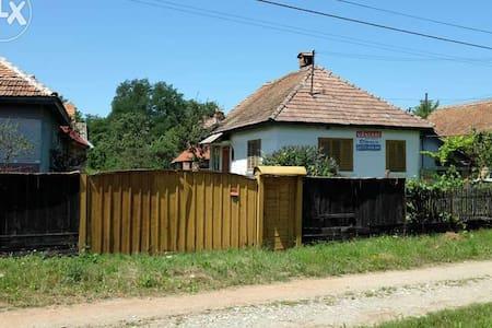 Holiday home Transylvanian village - Sărata
