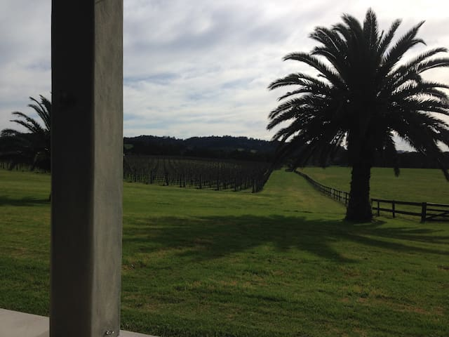 The Vineyard - Kumeu - House