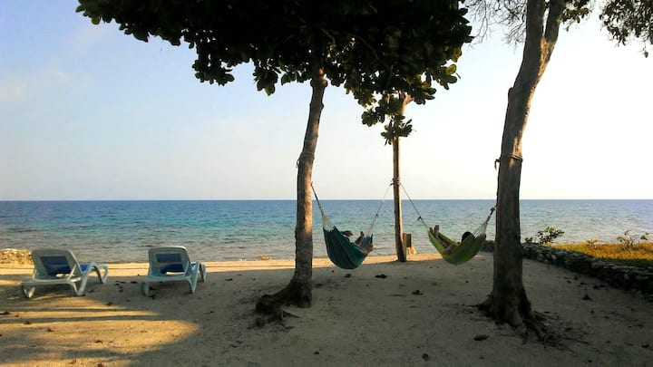 The Whaleshark Bungalow- A Serenity Beach Cottage