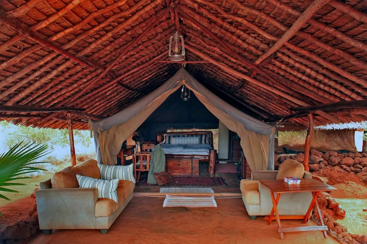 Accommodation in spacious safari tents. Tent 3 - King Bed
