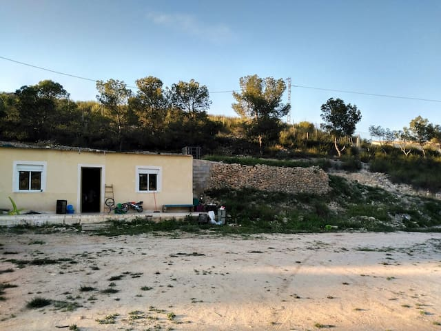 A retire cave 10.000m2 property - Beties - Talo