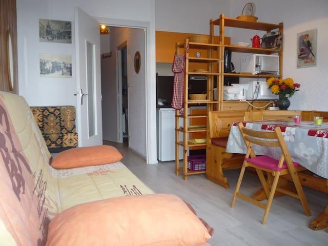 Appartement cosy, belle vue sur la montagne,le lac - Besse-et-Saint-Anastaise - Flat