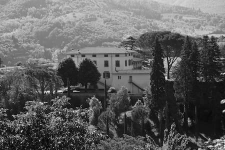 Villa Di Celle & Frantoio La Corte - Dicomano