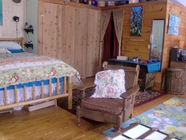 Adirondack Mountain Cabin - Vermontville - Cabana