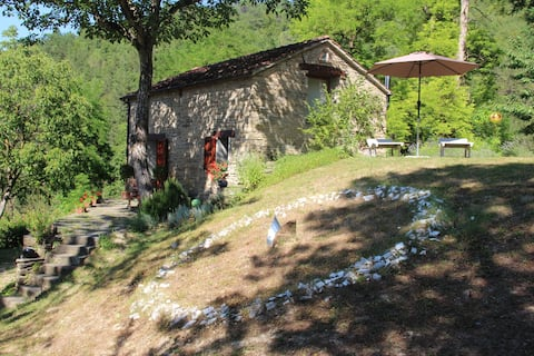 Porcaticcio, cottage in the woods with pool