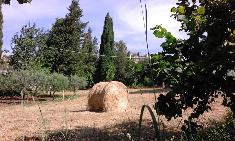 la casa nel vicolo dell'amore - ciciliano - House