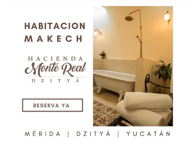 Hacienda Monte Real Dzityá | Suit Makech