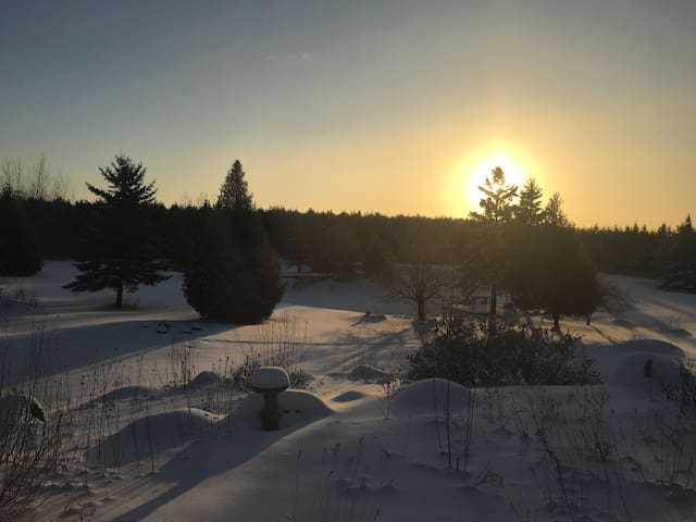 Enjoy the wonder of Devil's Glen Ski, hike, shop