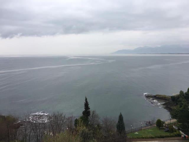 Muhteşem Deniz ve Doğa Manzarası