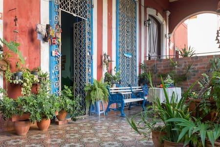 Fifi's home - La Habana