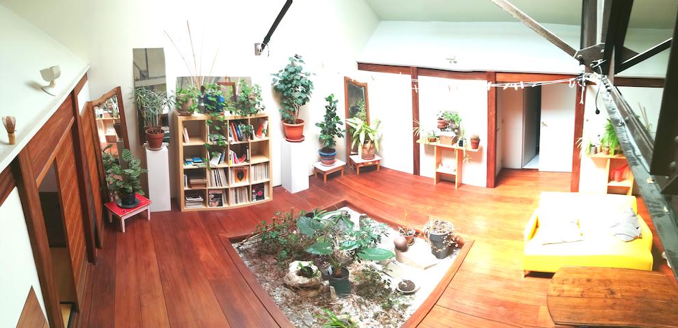Le loft Jungle
