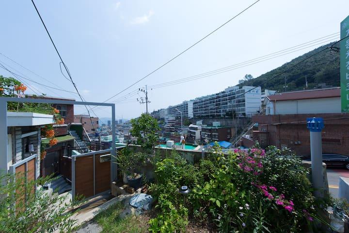 seochae 3