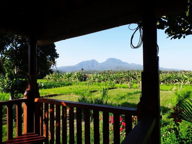 "Villa ""Rumah Kiamas"", dreamlike natural East Bali"