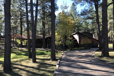 Large Mountain Home! In The Heart of TOWN!!! - 鲁伊多索(Ruidoso)