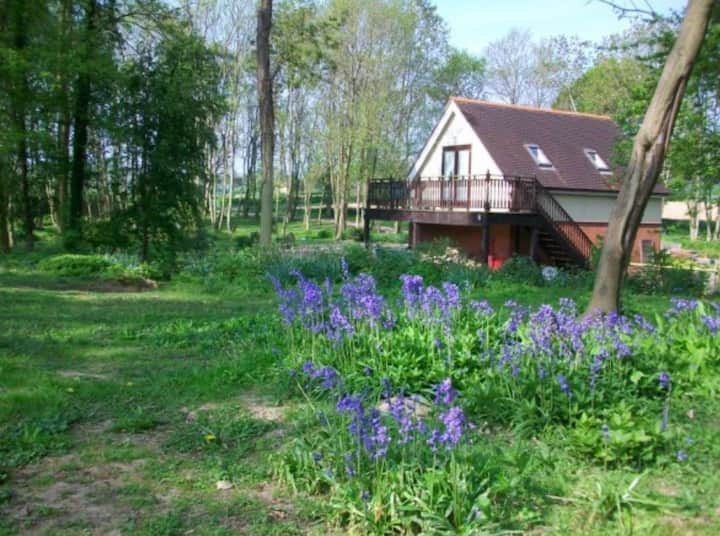 Bluebell Lodge  COVID 19 :Reopening 12th April