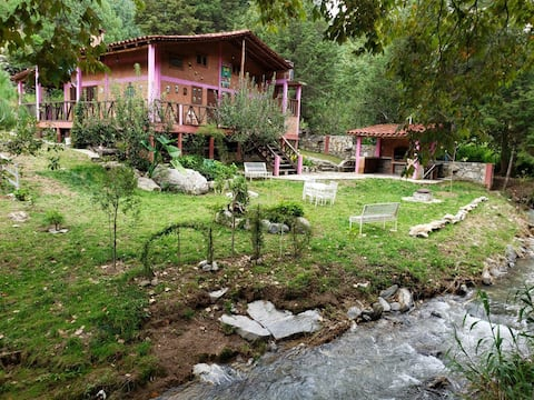 Hermosa cabaña familiar junto al río en el bosque