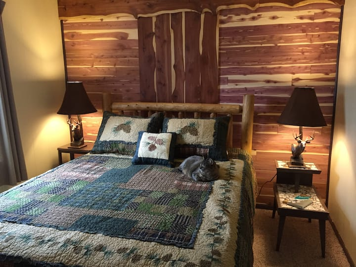 Homestead Cabin on the Conejos, Pet Friendly