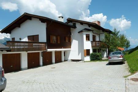 Ferienwohnung Spinatscha in Miraniga Obersaxen - Obersaxen - Lejlighed