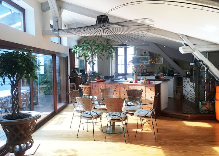 Nice Aptmt-loft-terrace center 150 yr²