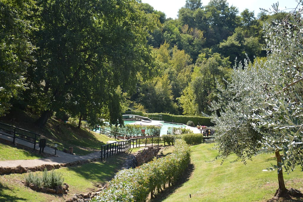 gardens and the thermal pool in our property