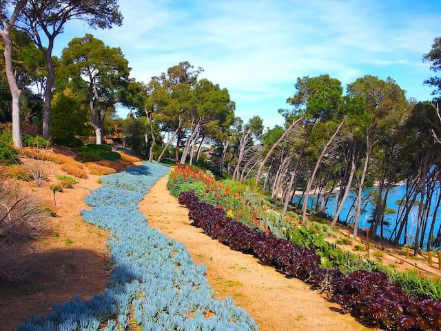 Vista dels jardins de Cap Roig :    jardí botànic.