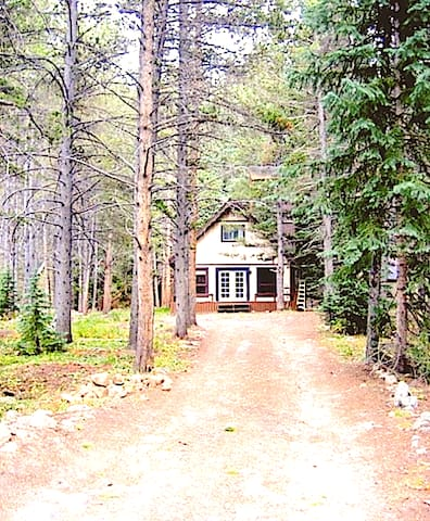 Enjoy Our Cozy Breckenridge Cottage In The Forest
