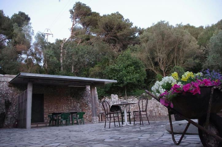 Villetta in pineta a Santa Cesarea - Santa Cesarea Terme - Apartment