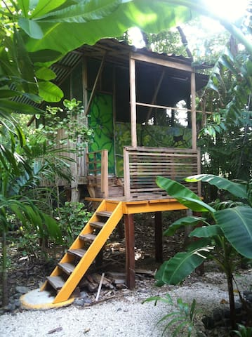 Casa Congo:  live monkey view, sleep in nature. - Nosara - Treehouse