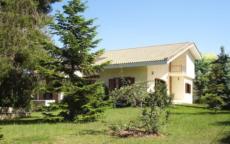 Artistic Countryside Villa - Agios Stefanos - Villa
