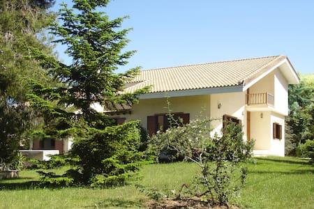 Artistic Countryside Villa - Agios Stefanos - วิลล่า