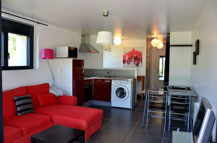 Location appartement centre ville - Mende - Lejlighed