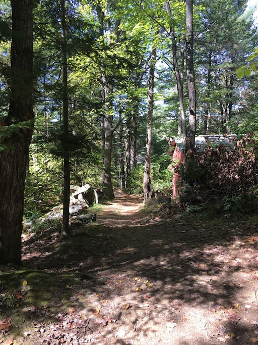 Trail to the cottage