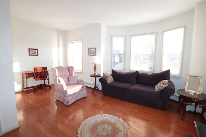 Beautiful Apartment Near Downtown Rg 15