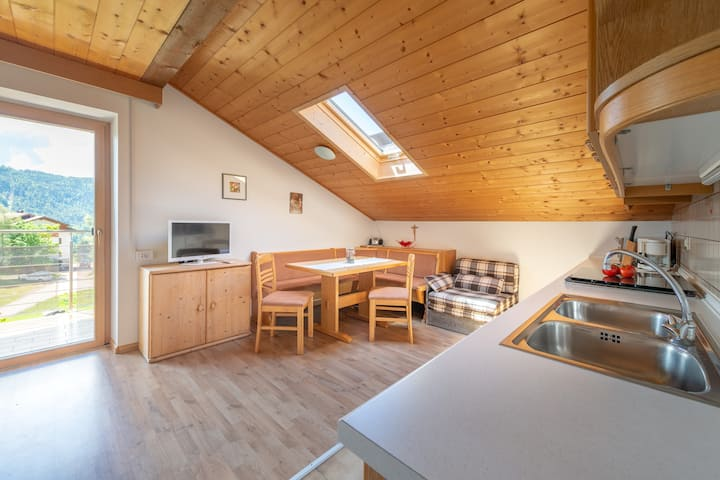 "Cosy ""Apartment 1 - Haus Oberzöhr"" with Mountain View, Wi-Fi, Balcony and Garden; Parking Available, Pets Allowed"