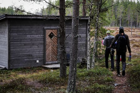 Björngömsle i Jämtland- Wild Jämtland