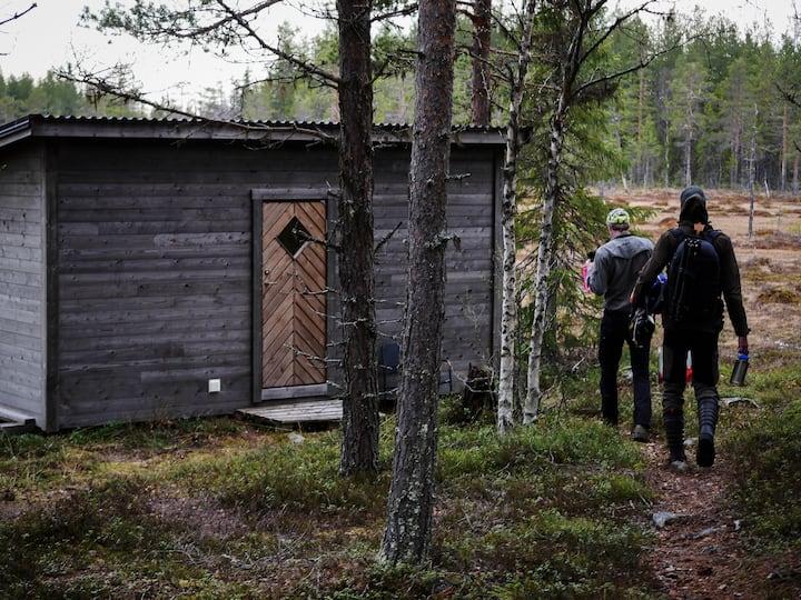 Wild Jämtland-  upplev den vilda björnen