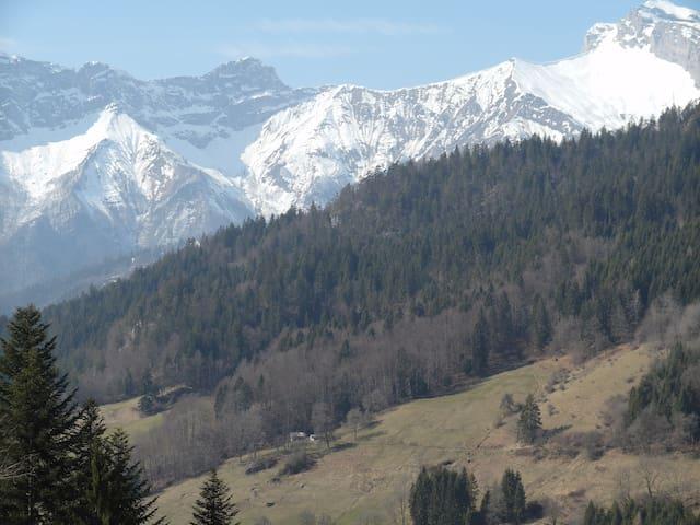 Ferme d'alpage rénovée - Le Bouchet-Mont-Charvin - Шале