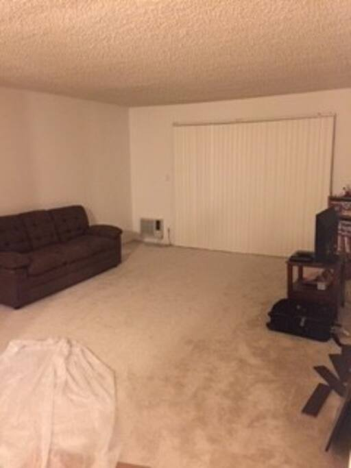The living room is really spacious! Standard couch too!